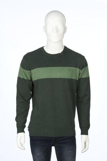 ColorPlus   ColorPlus Dark Green Sweater