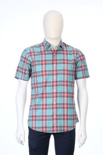ColorPlus   ColorPlus Medium Green Shirt