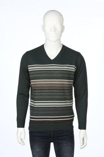 ColorPlus   ColorPlus Green Sweater