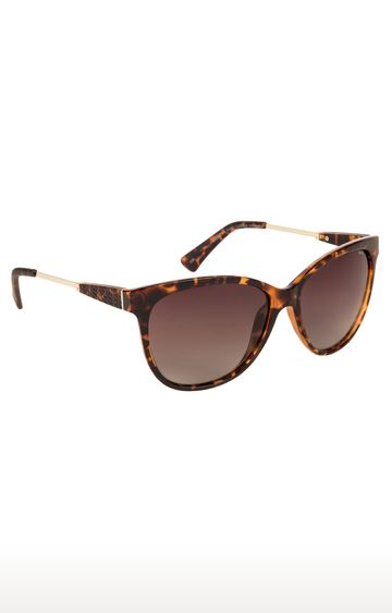Invu | Cat-eye Sunglass with Brown Lens