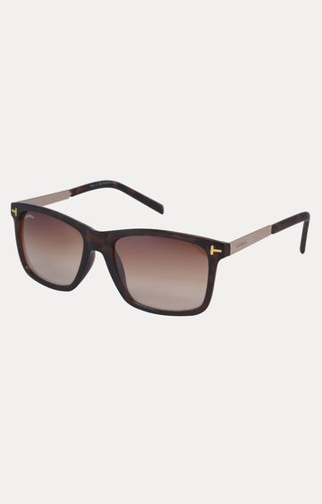 Laurels | Brown Wayfarers