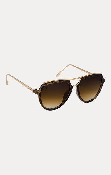Walrus   Brown Oval Sunglasses