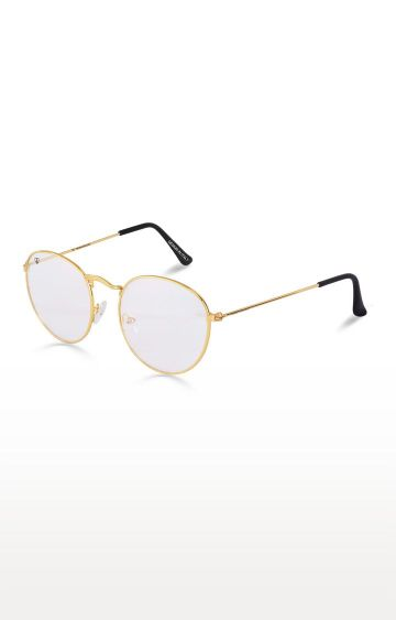 Walrus | Golden Round Sunglasses