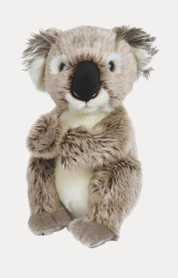 Hamleys | Baby Koala Soft Toy