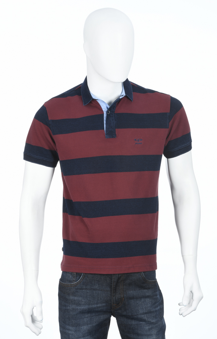 ColorPlus | Maroon and Navy Striped Polo T-Shirt