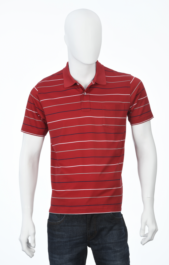 ColorPlus   Red Striped Polo T-Shirt