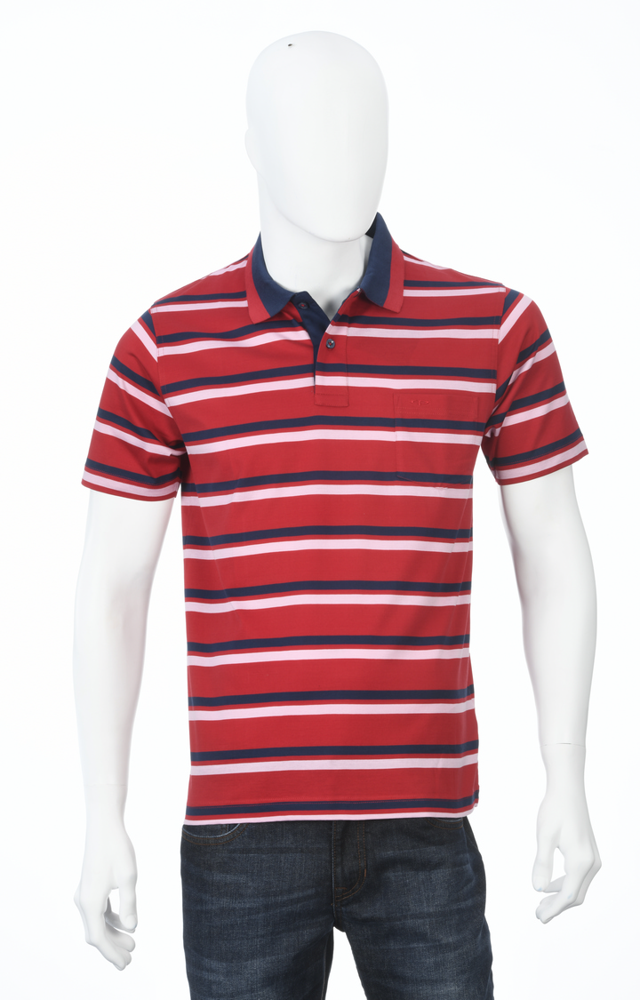 ColorPlus | Dark Red Striped Polo T-Shirt