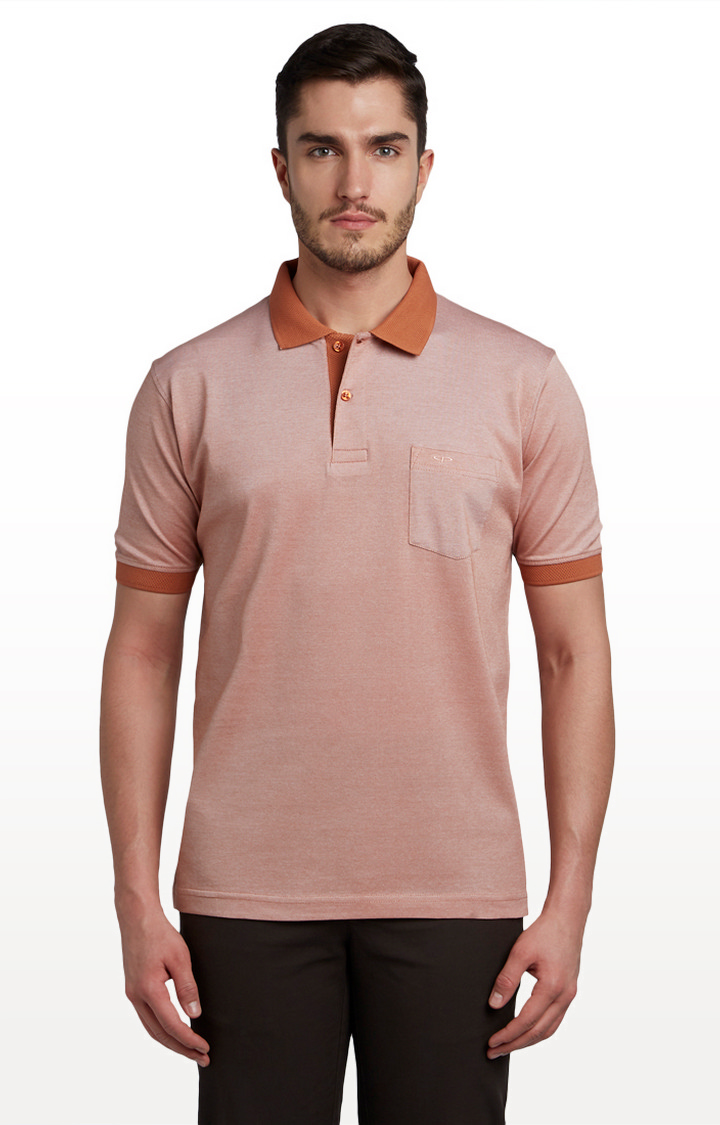 ColorPlus | Brown Solid Classic Fit Polo T-Shirt