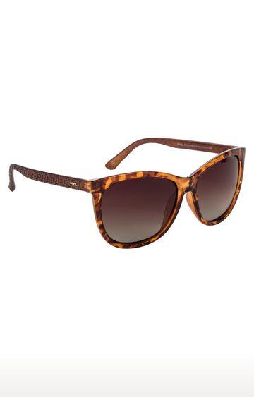 Invu   Wayfarers Sunglass with Brown Lens