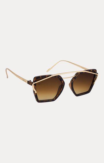 Walrus   Brown Browline Sunglasses