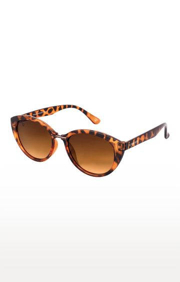 Walrus | Brown Cateye Sunglasses