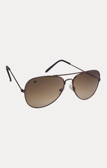 Walrus | Brown Aviators