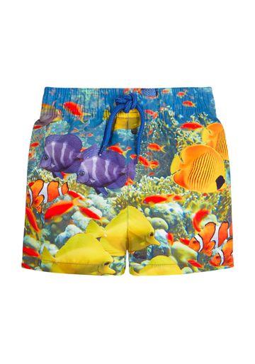Mothercare | Multicolor Boys Aquarium Swim Shorts