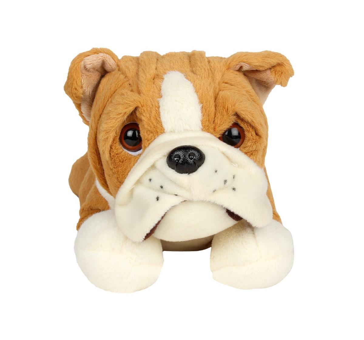 Cuddles | Cuddles Sleeping Bulldog 40 Cms Plush Toy for New Born Kids age 0M+