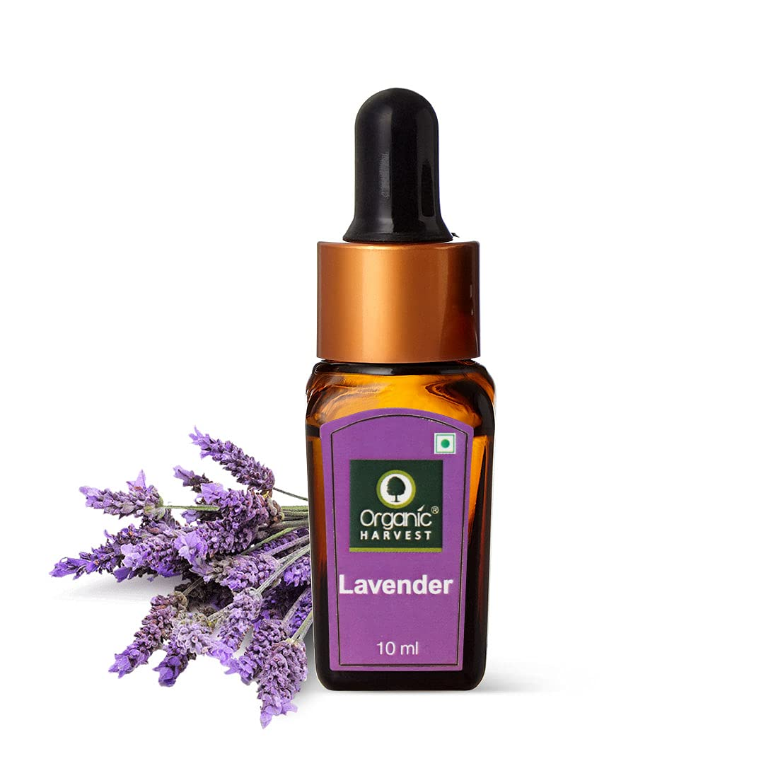 Organic Harvest | Lavender Essential Oil - 10ml