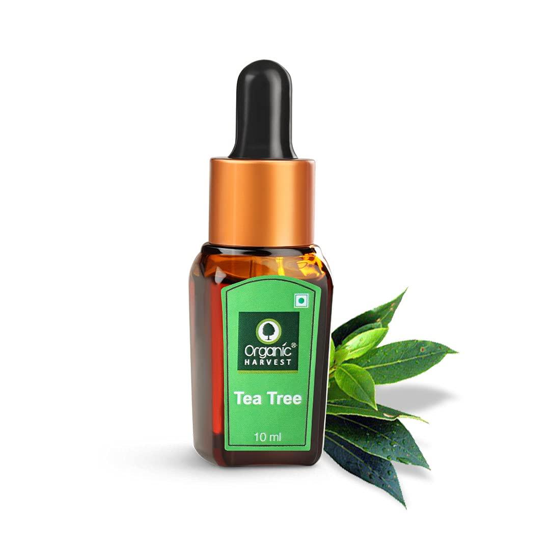Organic Harvest | Tea Tree Oil - 10ml