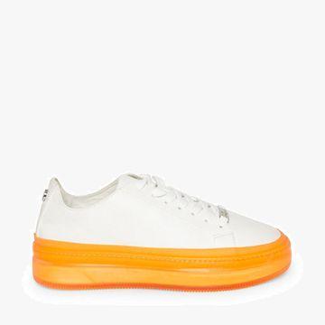 STEVE MADDEN | Sneakers